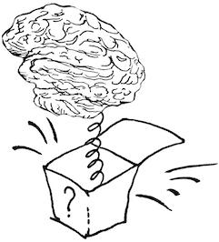 KK-brain box